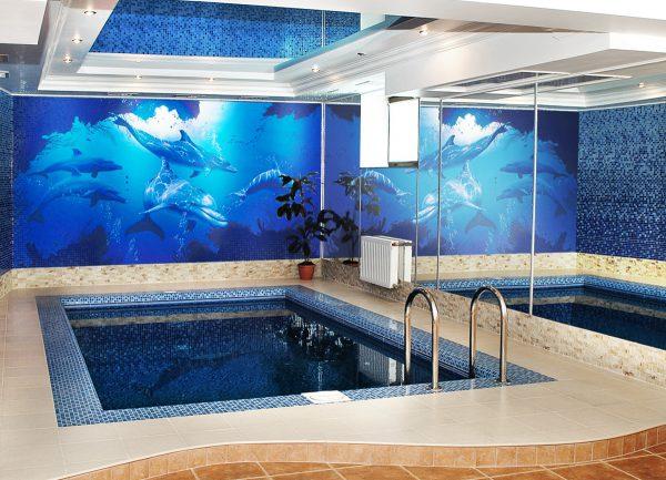 О бассейне в подвале