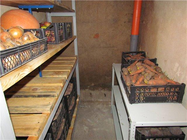 Погреб для хранения овощей и консервации в частном доме