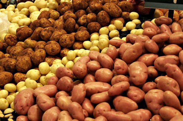 Хранение овощей и фруктов в подвале