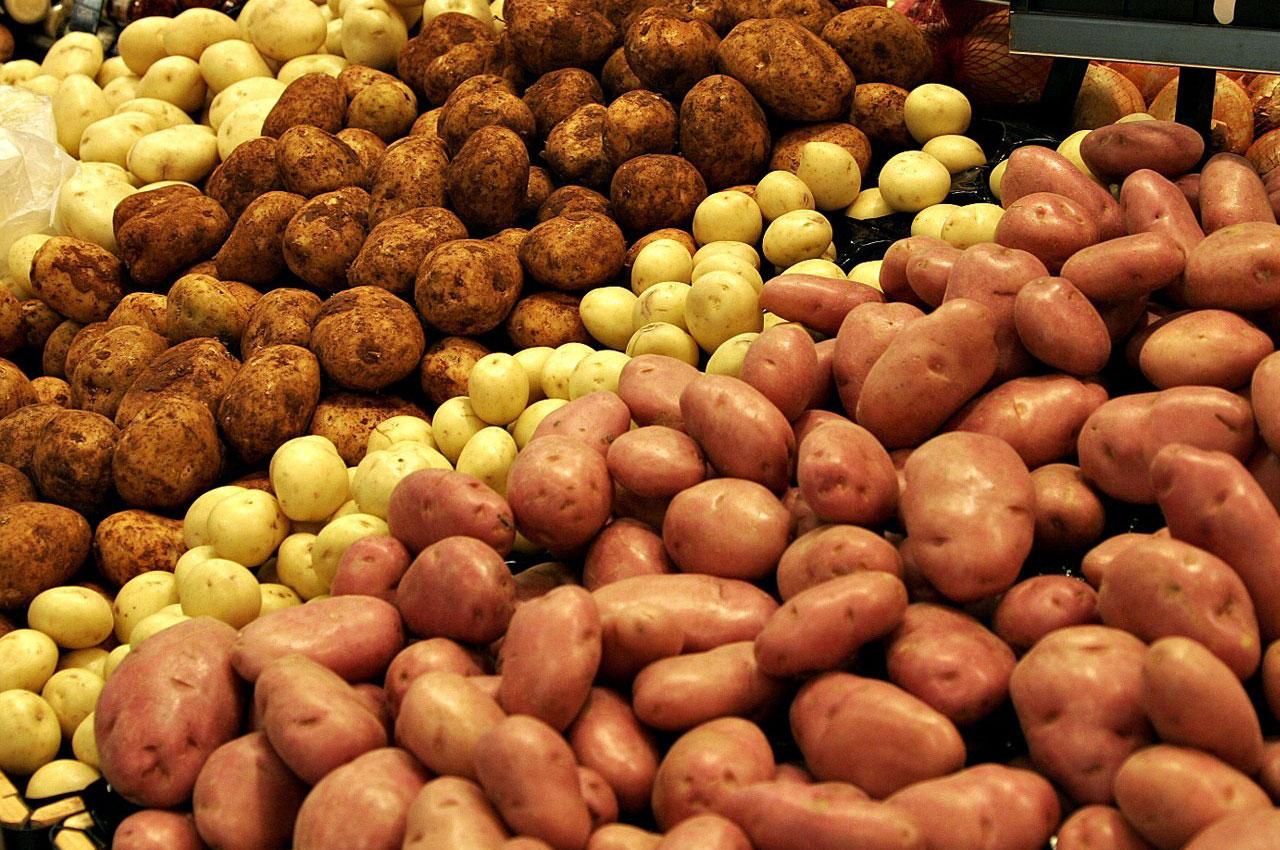 Как хранить картошку в ящике зимой в погребе: оптимальные условия и температура для хранения картофеля