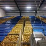Санитарные нормы для овощехранилищ